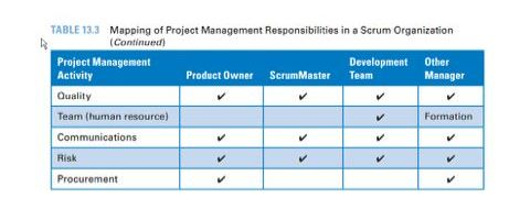 project manager2